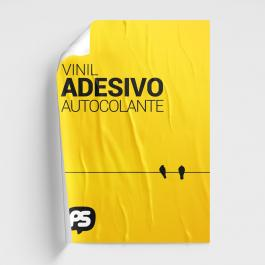 Cartaz Poster Adesivo Vinil Adesivo Brilho 60x40cm 4x0  Refile